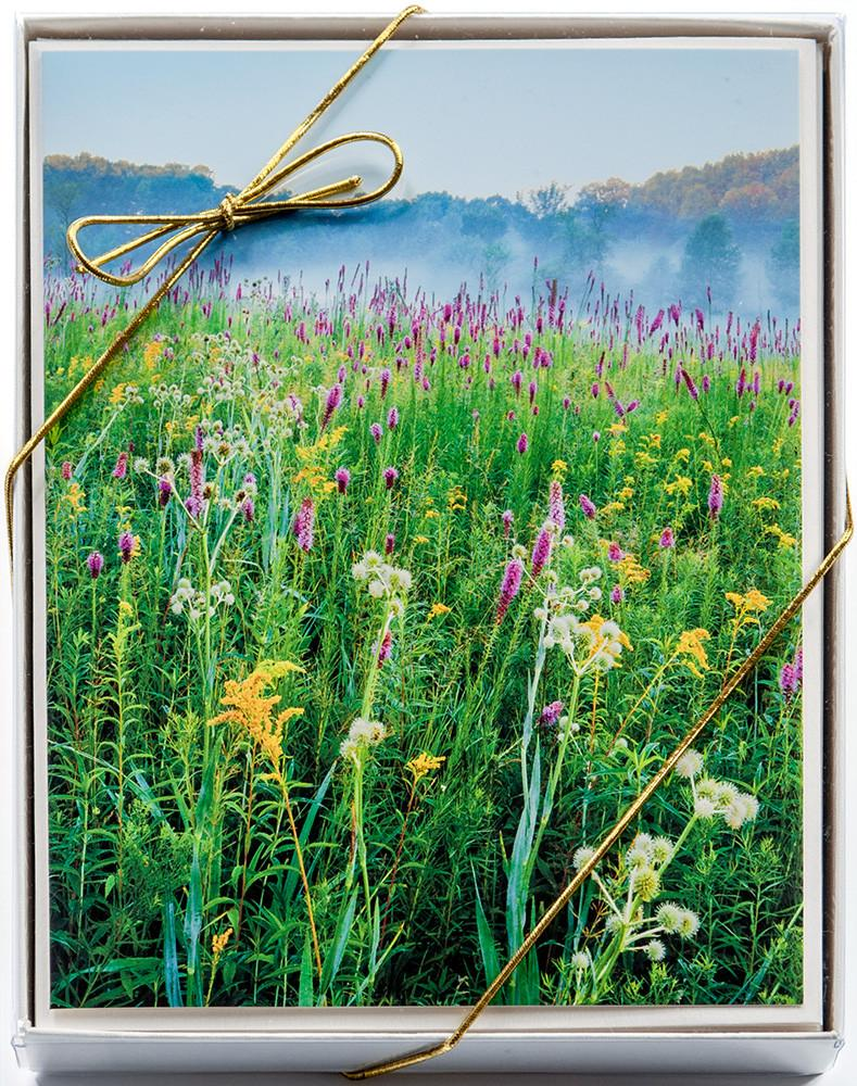 Four Season Card Assortment: 10-card assorted set of boxed cards by Mike MacDonald.