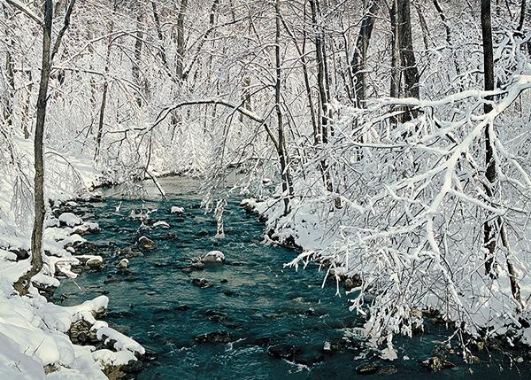The trees along a clear turquoise stream become painted with enchantment by a wet, late-winter snowfall.