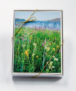 Nature Card Boxed Sets