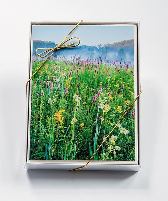 Nature Card Boxed Sets